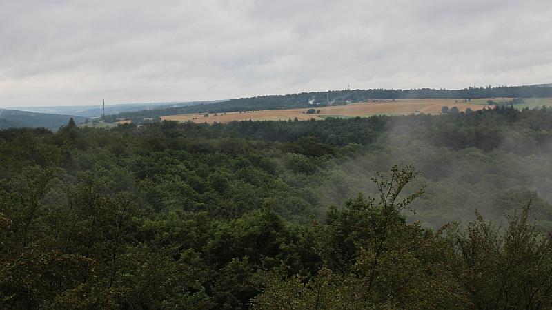 OGS-Ausflug.Baumwipfelpfad-02.800x450